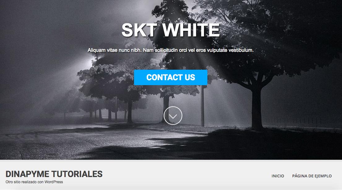 Temas Gratuitos WordPress: SKT White   Dinapyme