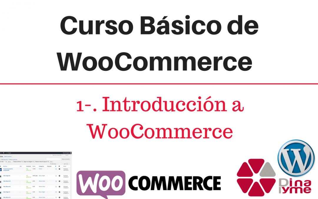 01 - Curso basico de WooCommerce