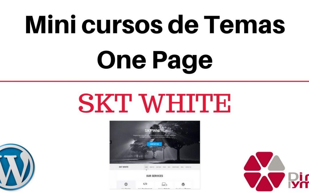 02-mini-cursos-temas-one-page-skt-white
