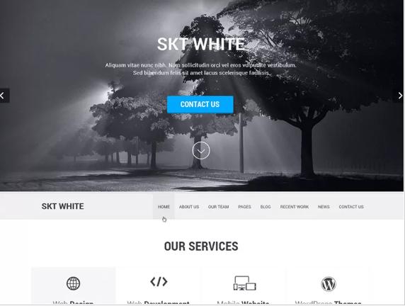 mini-curso-temas-one-page-skt-white